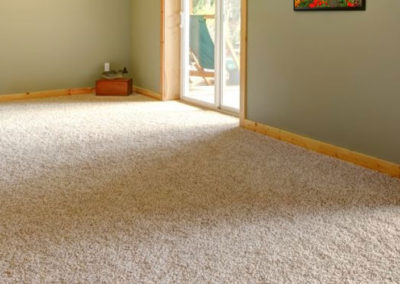 Header-Carpet